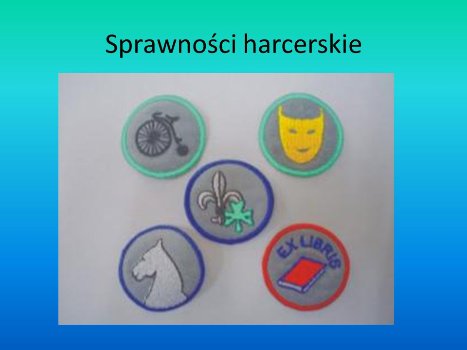 Znaki służb Znaki służb - odpowiedniki sprawności, zdobywane przez harcerzy starszych i wędrowników grupowo.