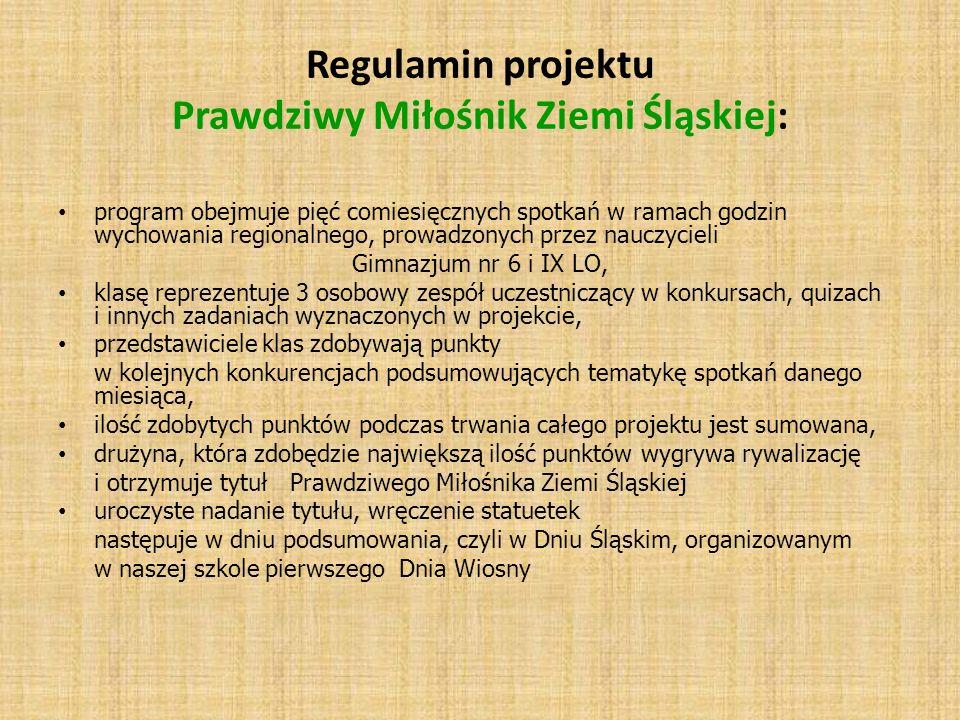 Regulamin projektu Prawdziwy Miłośnik Ziemi Śląskiej: program obejmuje pięć comiesięcznych spotkań w ramach godzin wychowania regionalnego, prowadzony