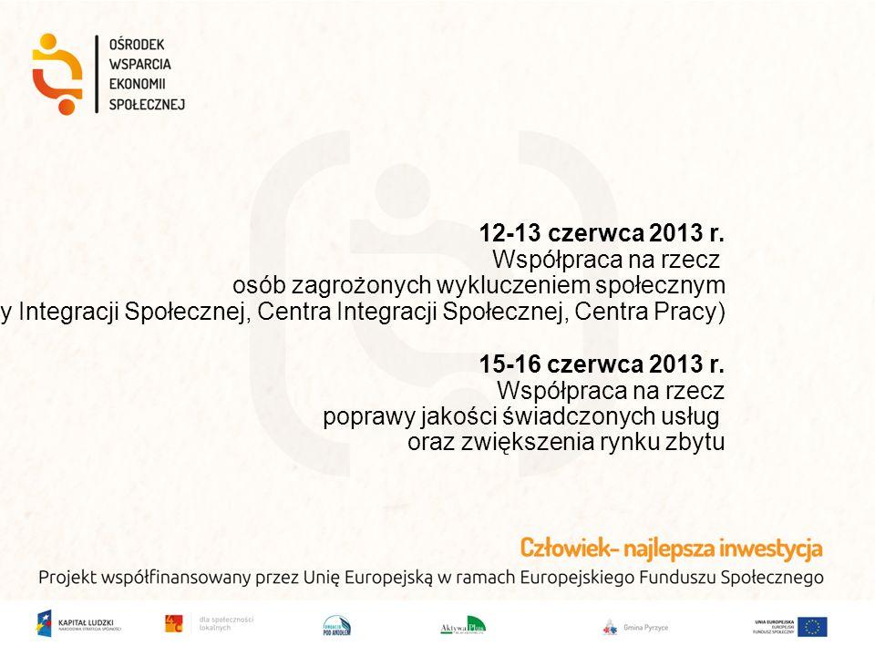 12-13 czerwca 2013 r. Współpraca na rzecz osób zagrożonych wykluczeniem społecznym (Kluby Integracji Społecznej, Centra Integracji Społecznej, Centra