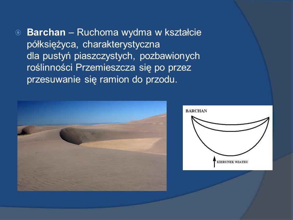 Barchan – Ruchoma wydma w kształcie półksiężyca, charakterystyczna dla pustyń piaszczystych, pozbawionych roślinności Przemieszcza się po przez przesu