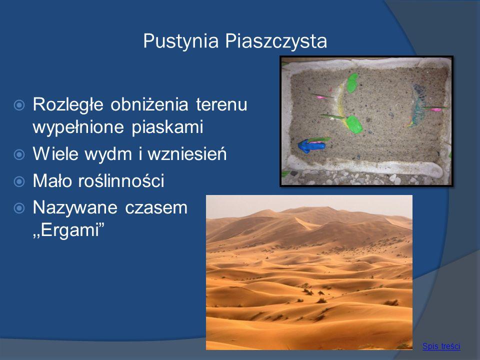 Pustynia Piaszczysta Rozległe obniżenia terenu wypełnione piaskami Wiele wydm i wzniesień Mało roślinności Nazywane czasem Ergami Spis treści