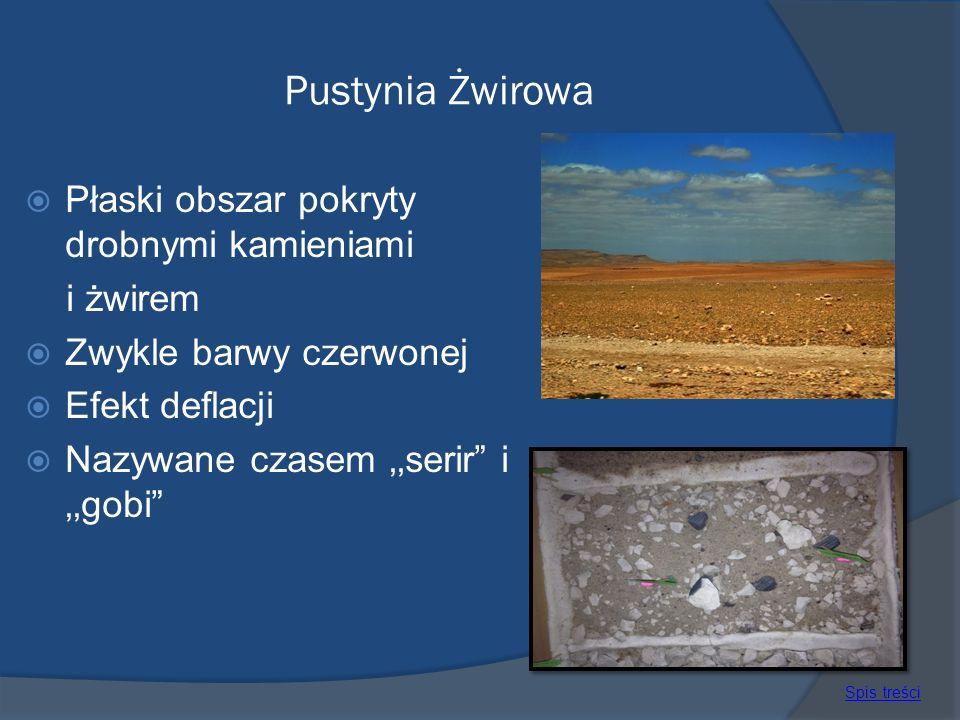 Pustynia Żwirowa Płaski obszar pokryty drobnymi kamieniami i żwirem Zwykle barwy czerwonej Efekt deflacji Nazywane czasem serir i gobi Spis treści