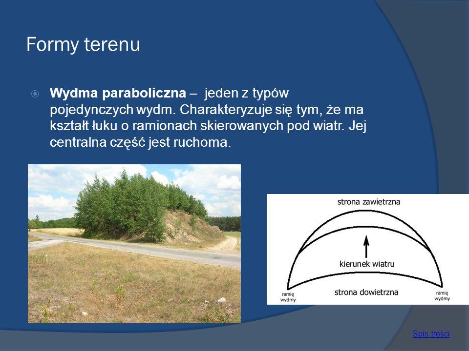 Formy terenu Wydma paraboliczna – jeden z typów pojedynczych wydm. Charakteryzuje się tym, że ma kształt łuku o ramionach skierowanych pod wiatr. Jej