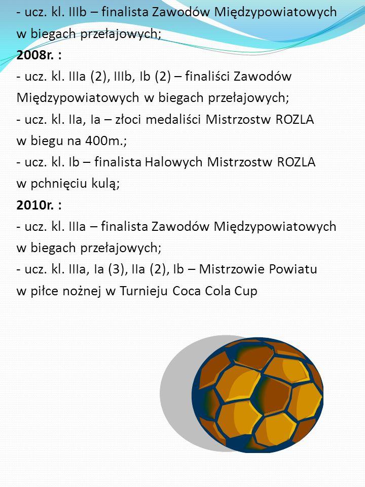 - ucz.kl. IIIb – finalista Zawodów Międzypowiatowych w biegach przełajowych; 2008r.
