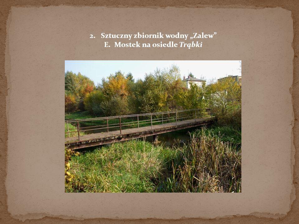 2.Sztuczny zbiornik wodny Zalew E. Mostek na osiedle Trąbki