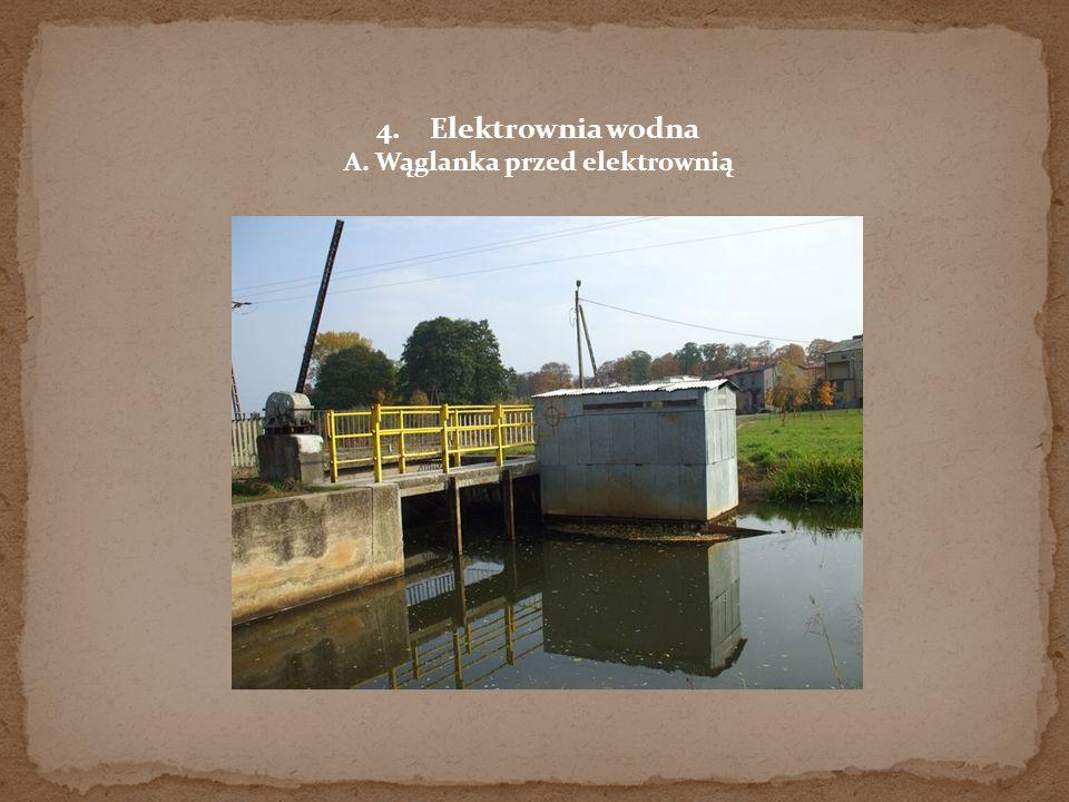 4.Elektrownia wodna A. Wąglanka przed elektrownią