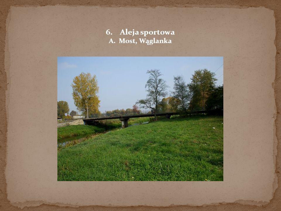 6.Aleja sportowa A. Most, Wąglanka