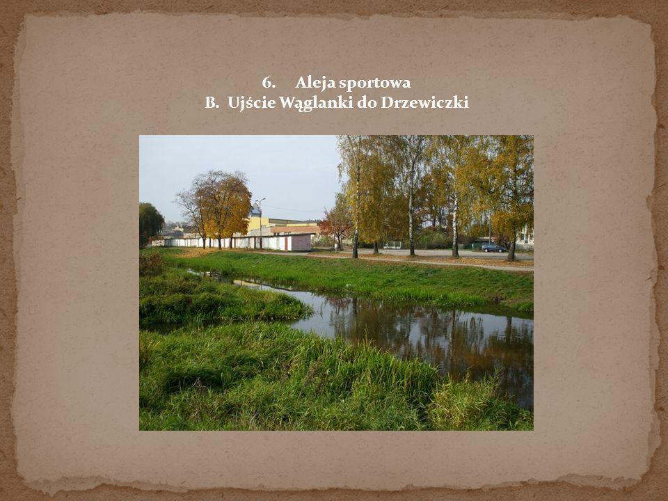 6.Aleja sportowa B. Ujście Wąglanki do Drzewiczki