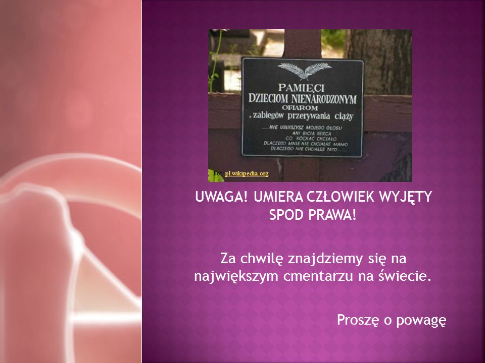 UWAGA! UMIERA CZŁOWIEK WYJĘTY SPOD PRAWA! Za chwilę znajdziemy się na największym cmentarzu na świecie. Proszę o powagę Fot. pl.wikipedia.orgpl.wikipe