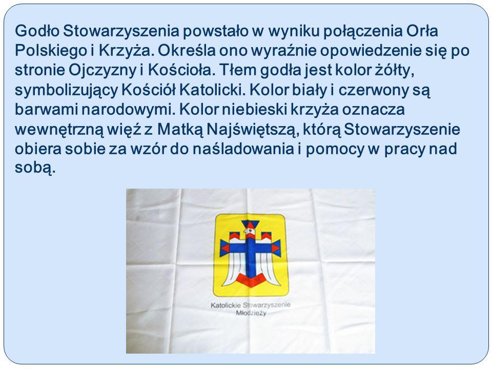 Godło Stowarzyszenia powstało w wyniku połączenia Orła Polskiego i Krzyża. Określa ono wyraźnie opowiedzenie się po stronie Ojczyzny i Kościoła. Tłem