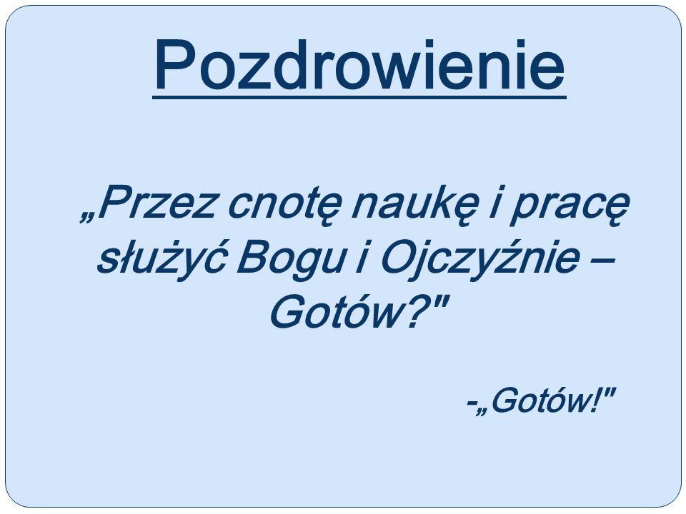 Treść przyrzeczenia: Uroczyście przyrzekam pracować nad sobą, aby móc całym życiem wiernie służyć Bogu, Kościołowi i Polsce, czynić dobrze ludziom, być dobrym członkiem Katolickiego Stowarzyszenia Młodzieży.