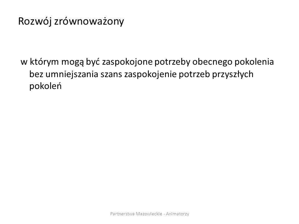 Iluminacja STAFIEJ PARTNERZY Partnerstwa Mazowieckie - Animatorzy