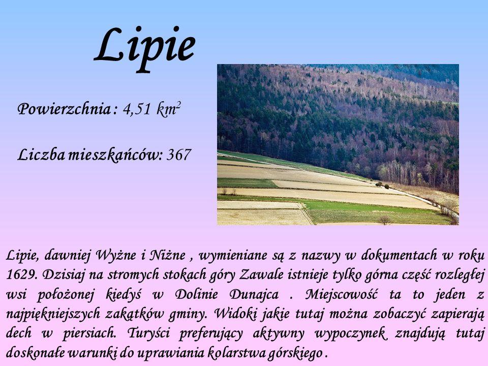 Lipie Powierzchnia : 4,51 km 2 Liczba mieszkańców: 367 Lipie, dawniej Wyżne i Niżne, wymieniane są z nazwy w dokumentach w roku 1629.