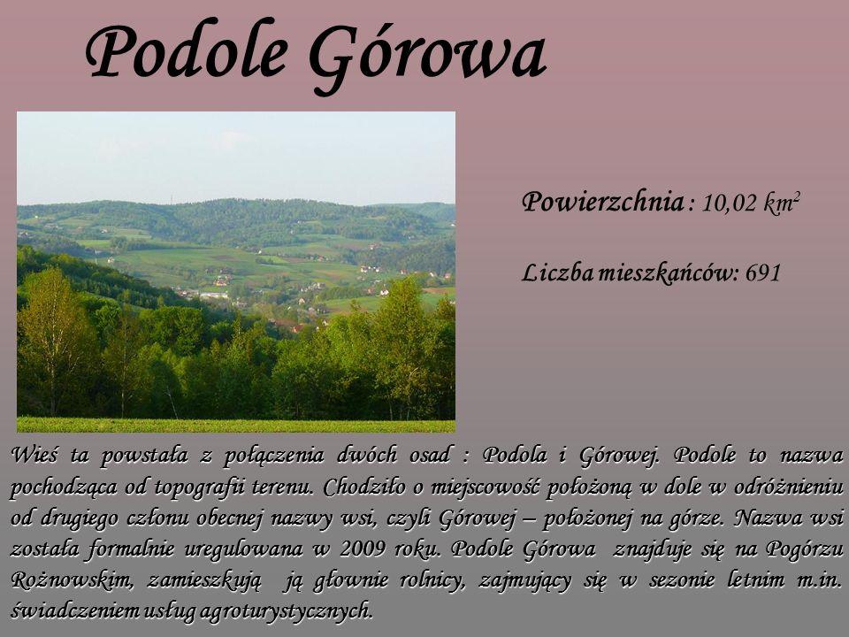 Podole Górowa Powierzchnia : 10,02 km 2 Liczba mieszkańców: 691 Wieś ta powstała z połączenia dwóch osad : Podola i Górowej.