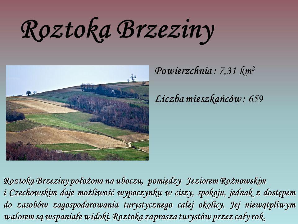 Roztoka Brzeziny Powierzchnia : 7,31 km 2 Liczba mieszkańców : 659 Roztoka Brzeziny położona na uboczu, pomiędzy Jeziorem Rożnowskim i Czechowskim daje możliwość wypoczynku w ciszy, spokoju, jednak z dostępem do zasobów zagospodarowania turystycznego całej okolicy.