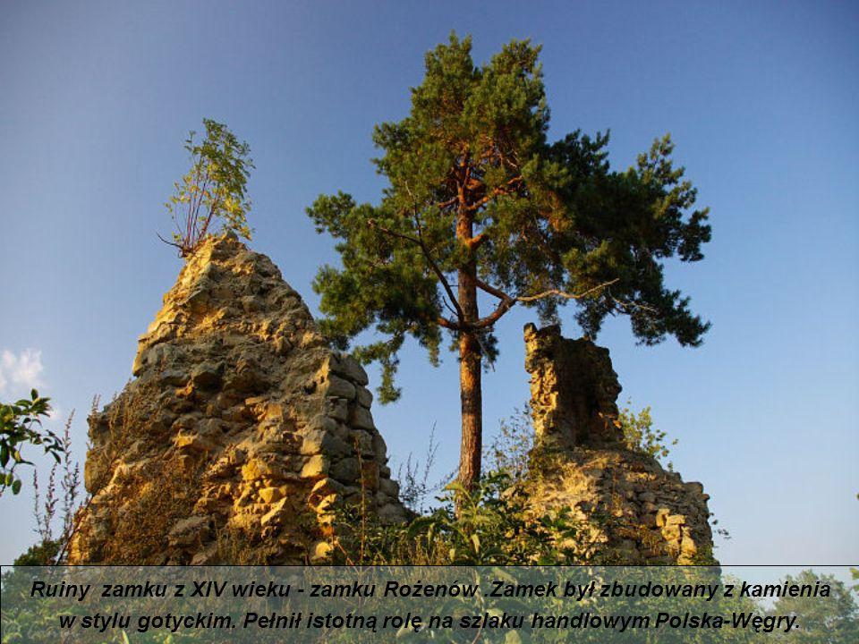 Ruiny zamku z XIV wieku - zamku Rożenów.Zamek był zbudowany z kamienia w stylu gotyckim.