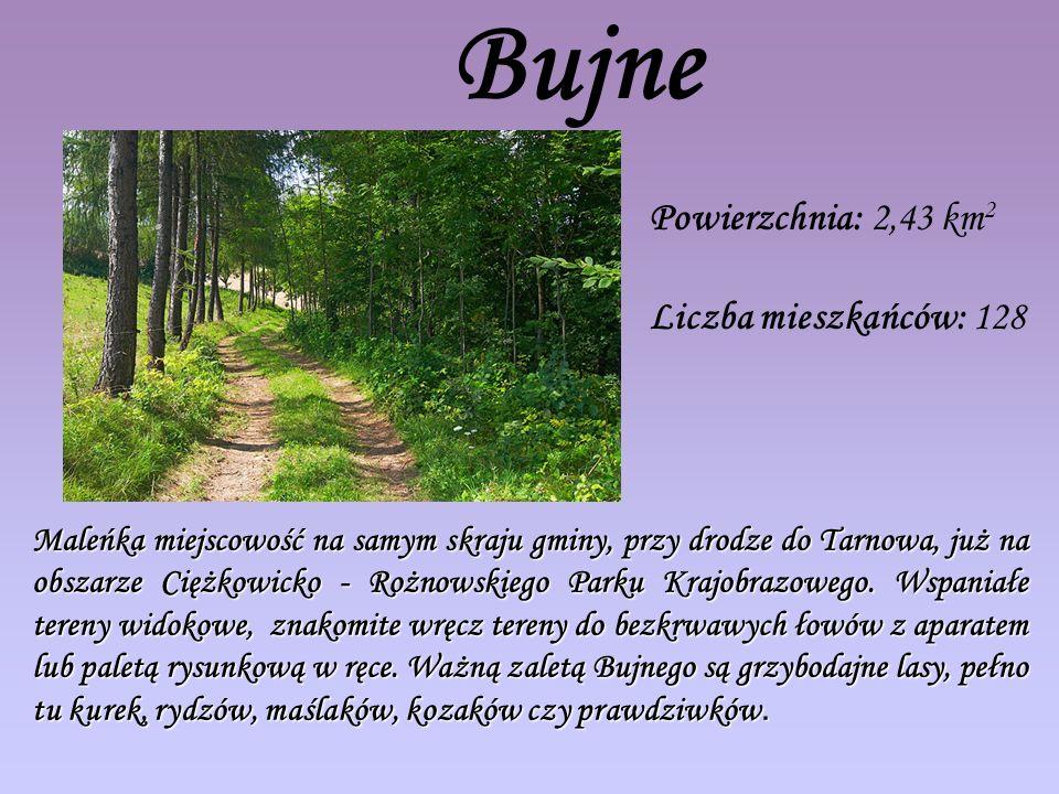 Bujne Powierzchnia: 2,43 km 2 Liczba mieszkańców: 128 Maleńka miejscowość na samym skraju gminy, przy drodze do Tarnowa, już na obszarze Ciężkowicko - Rożnowskiego Parku Krajobrazowego.