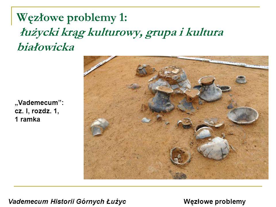 Węzłowe problemy 2: Wiek X - stuleciem grodów Vademecum Historii Górnych Łużyc Vademecum: cz.
