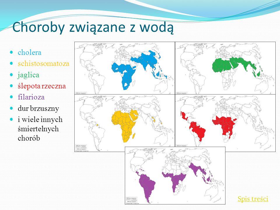 Choroby związane z wodą cholera schistosomatoza jaglica ślepota rzeczna filarioza dur brzuszny i wiele innych śmiertelnych chorób Spis treści