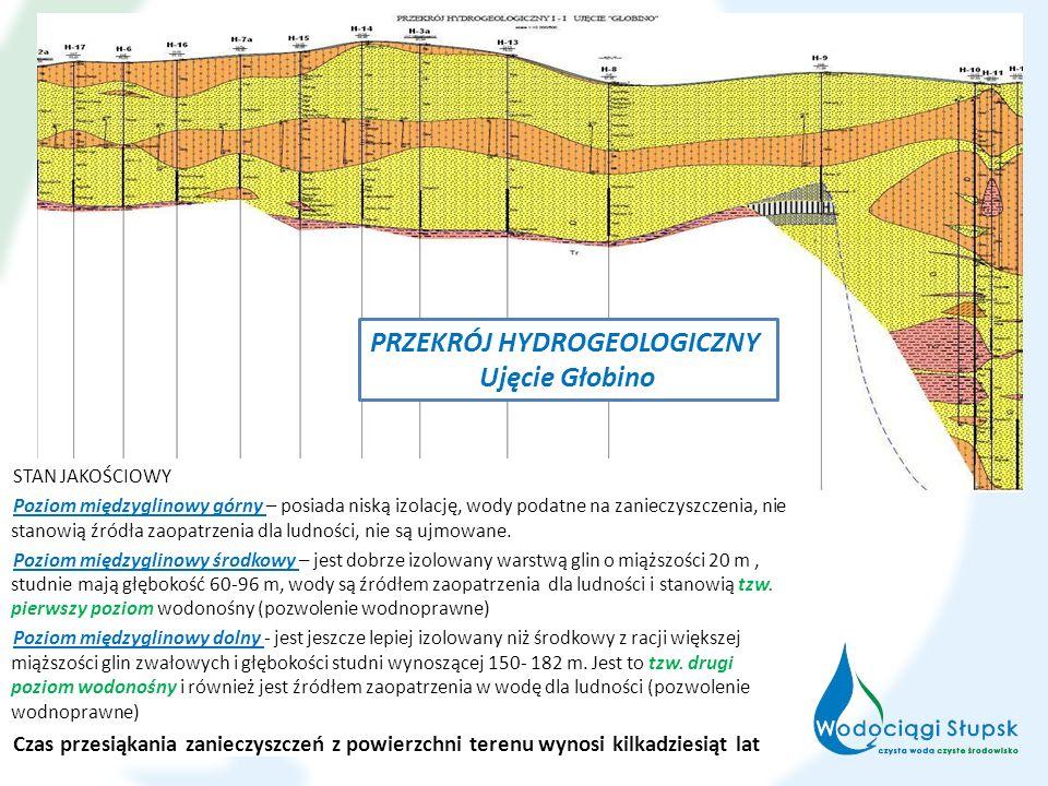 STAN JAKOŚCIOWY Poziom międzyglinowy górny – posiada niską izolację, wody podatne na zanieczyszczenia, nie stanowią źródła zaopatrzenia dla ludności,