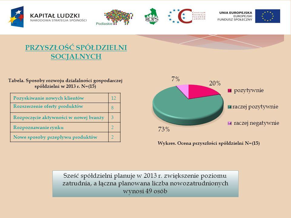 Tabela. Sposoby rozwoju działalności gospodarczej spółdzielni w 2013 r. N=(15) Sześć spółdzielni planuje w 2013 r. zwiększenie poziomu zatrudnia, a łą