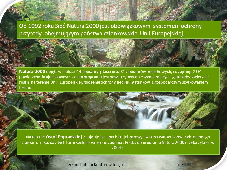 Na terenie Ostoi Popradzkiej znajduje się 1 park krajobrazowy, 14 rezerwatów i obszar chronionego krajobrazu - każda z tych form spełnia określone zad