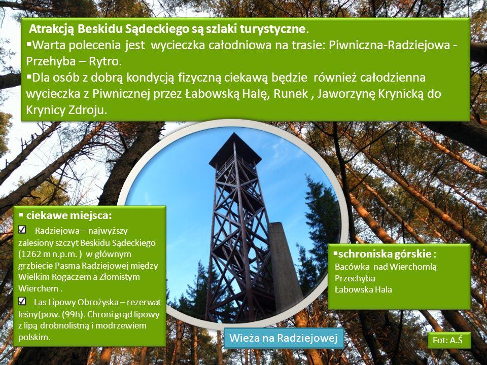 Atrakcją Beskidu Sądeckiego są szlaki turystyczne. Warta polecenia jest wycieczka całodniowa na trasie: Piwniczna-Radziejowa - Przehyba – Rytro. Dla o