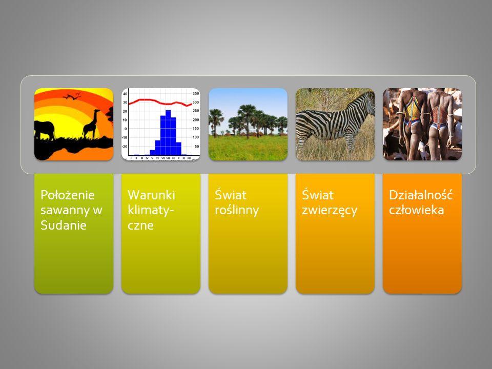 Położenie sawanny w Sudanie Warunki klimaty- czne Świat roślinny Świat zwierzęcy Działalność człowieka