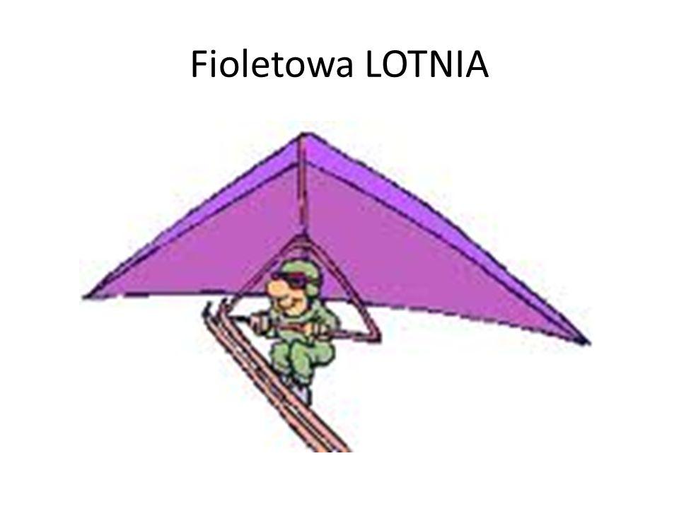 Fioletowa LOTNIA