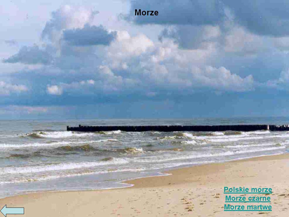 Morze Polskie morze Morze czarne Morze martwe