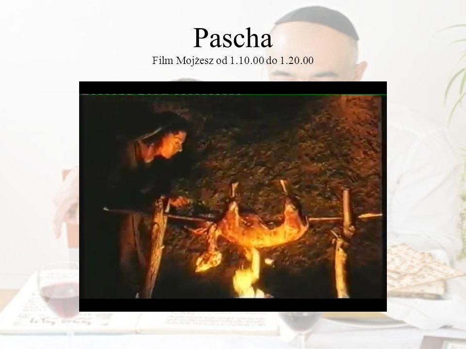 Pascha to…? Karty pracy str. 24, ćwicz. 2 Fot © Erica Guilane-Nachez - Fotolia.com