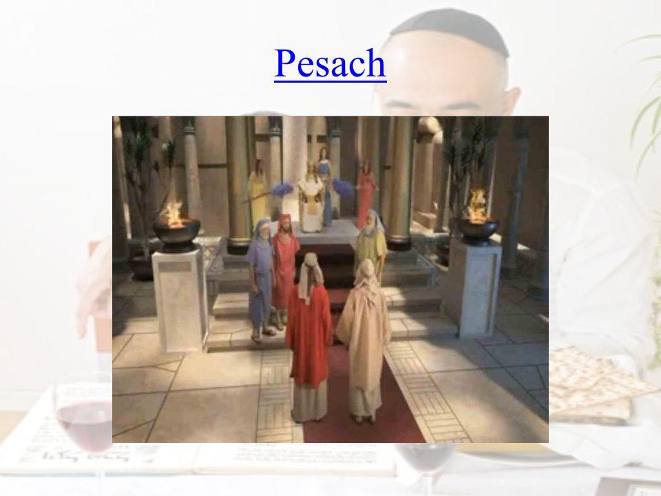 Notatka Dziś dla Żydów Pascha to święto, w czasie którego urządza się ucztę rodzinną, na której spożywa się taką kolację, jaką Izraelicie jedli przed wyjściem z Egiptu.