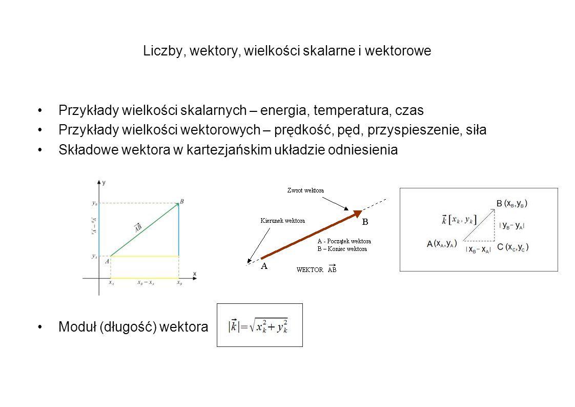 Liczby, wektory, wielkości skalarne i wektorowe Przykłady wielkości skalarnych – energia, temperatura, czas Przykłady wielkości wektorowych – prędkość