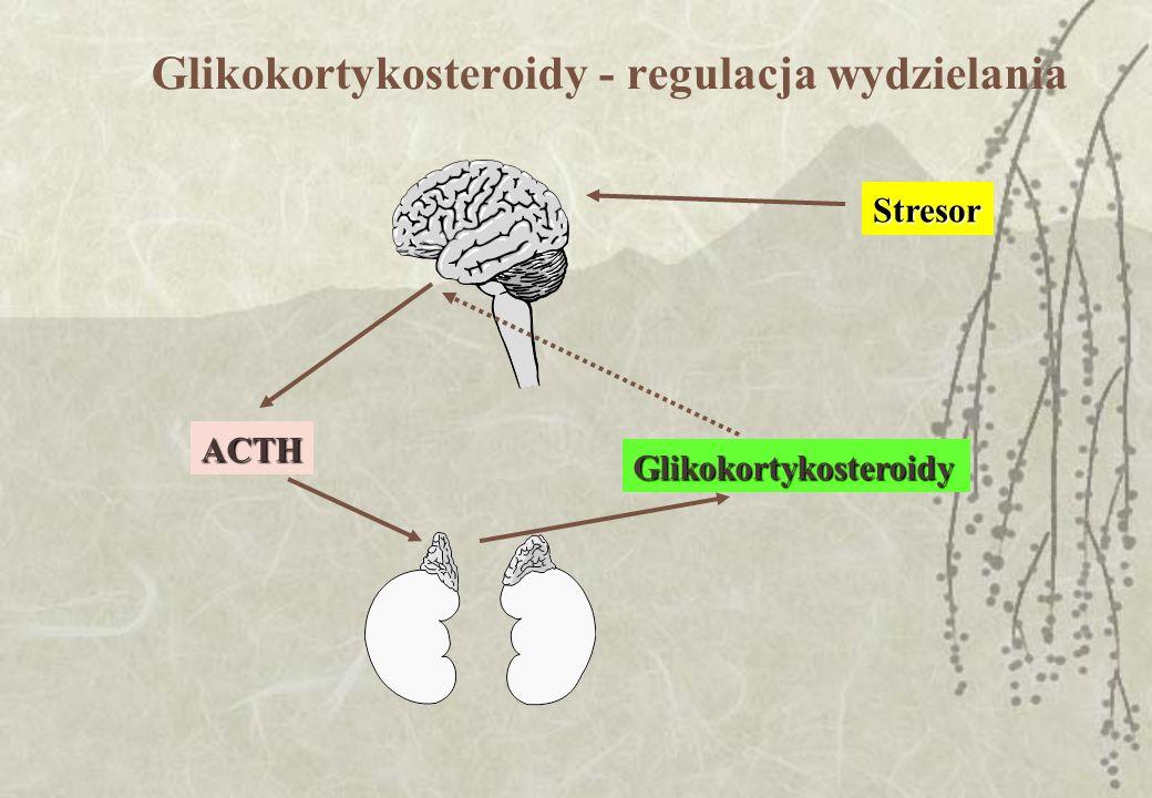 Glikokortykosteroidy - regulacja wydzielaniaACTH Glikokortykosteroidy Stresor
