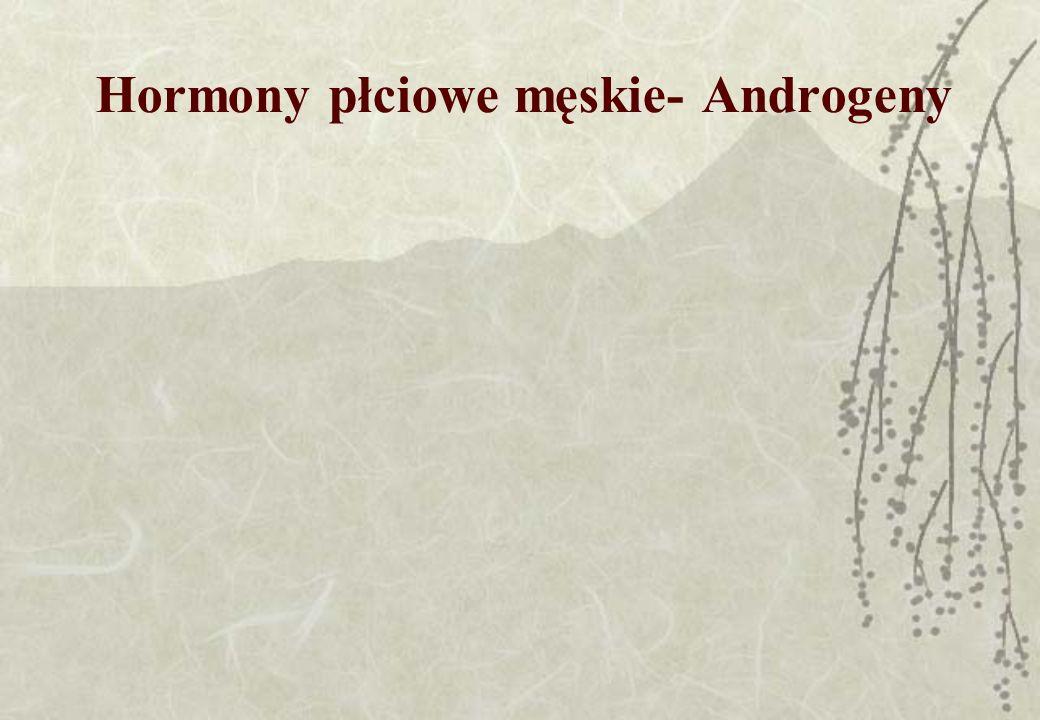 Hormony płciowe męskie- Androgeny