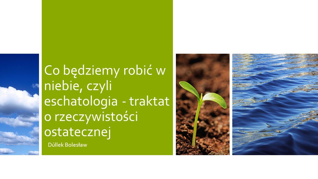 Co będziemy robić w niebie, czyli eschatologia - traktat o rzeczywistości ostatecznej Dúllek Bolesław