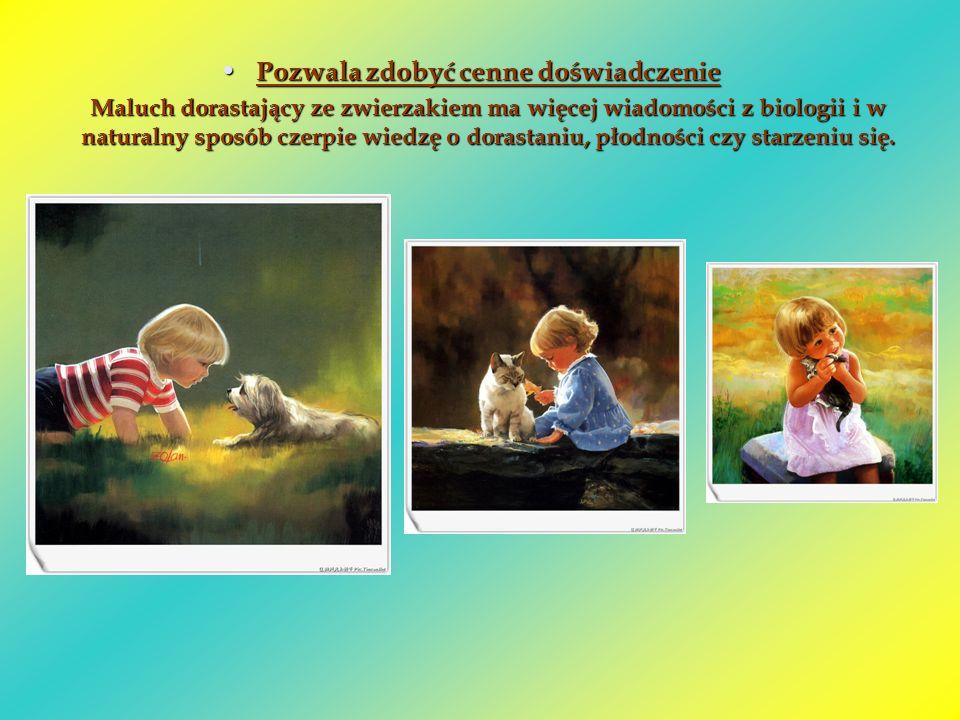 Uczy odpowiedzialności Uczy odpowiedzialności Każdy zwierzak wymaga stałych posiłków czy spacerów, bo inaczej cierpi albo choruje.