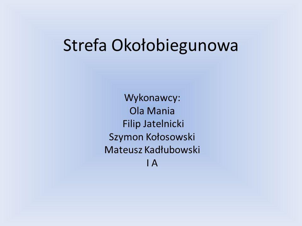 Strefa Okołobiegunowa Wykonawcy: Ola Mania Filip Jatelnicki Szymon Kołosowski Mateusz Kadłubowski I A