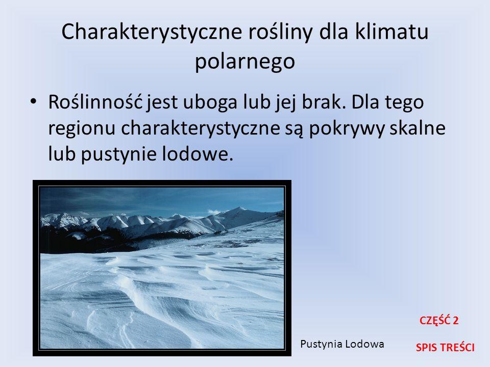 Charakterystyczne rośliny dla klimatu polarnego Roślinność jest uboga lub jej brak. Dla tego regionu charakterystyczne są pokrywy skalne lub pustynie