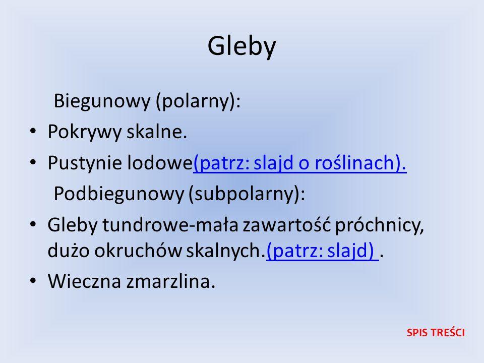 Gleby Biegunowy (polarny): Pokrywy skalne. Pustynie lodowe(patrz: slajd o roślinach).(patrz: slajd o roślinach). Podbiegunowy (subpolarny): Gleby tund