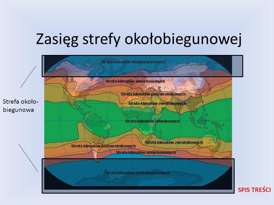 Zasięg strefy okołobiegunowej SPIS TREŚCI Strefa około- biegunowa