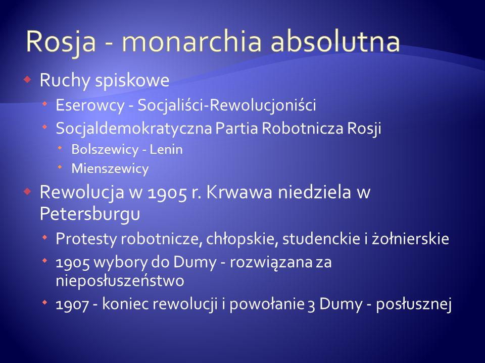 Ruchy spiskowe Eserowcy - Socjaliści-Rewolucjoniści Socjaldemokratyczna Partia Robotnicza Rosji Bolszewicy - Lenin Mienszewicy Rewolucja w 1905 r. Krw