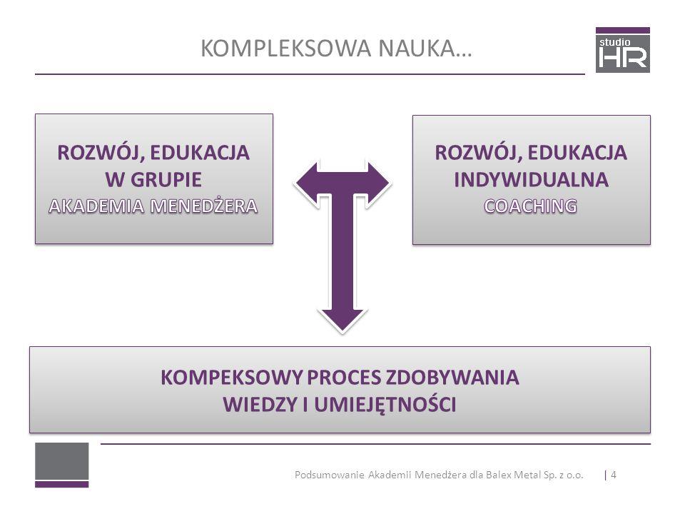 Podsumowanie Akademii Menedżera dla Balex Metal Sp. z o.o. KOMPLEKSOWA NAUKA… | 4