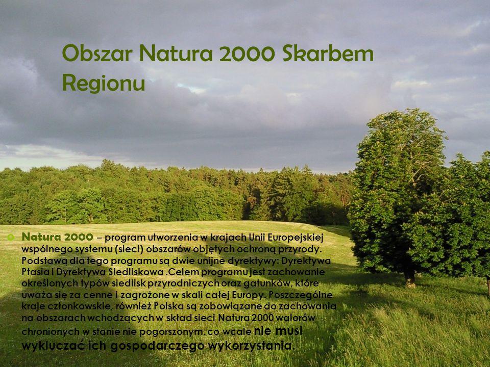 Obszar Natura 2000 Skarbem Regionu Natura 2000 – program utworzenia w krajach Unii Europejskiej wspólnego systemu (sieci) obszarów objętych ochroną pr