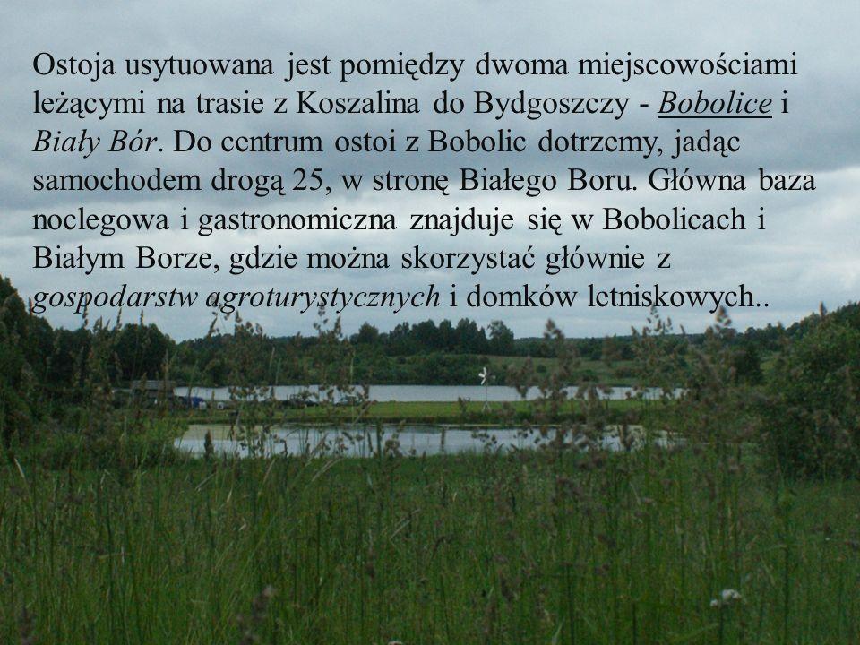 Ostoja usytuowana jest pomiędzy dwoma miejscowościami leżącymi na trasie z Koszalina do Bydgoszczy - Bobolice i Biały Bór. Do centrum ostoi z Bobolic