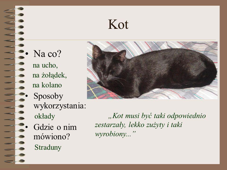 Kot Na co.na ucho, na żołądek, na kolano Sposoby wykorzystania: okłady Gdzie o nim mówiono.