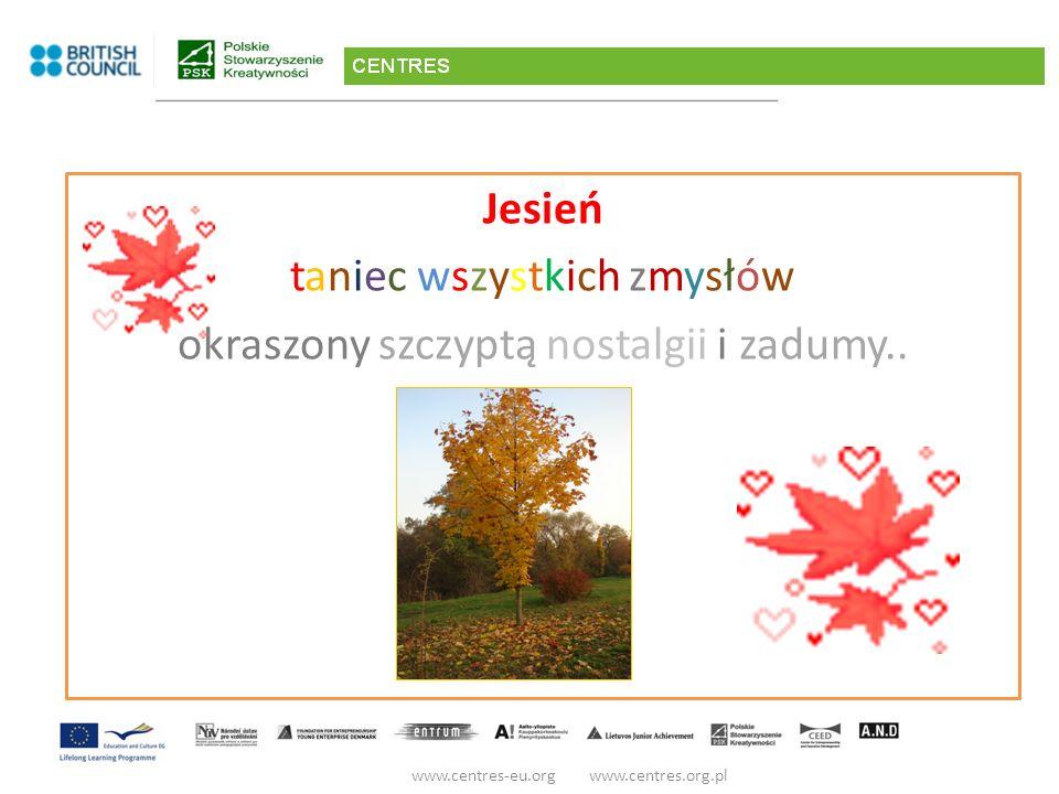 Spotkanie VI ? Ale co to znaczy? www.centres-eu.org www.centres.org.pl Śmiertecka Marzańka