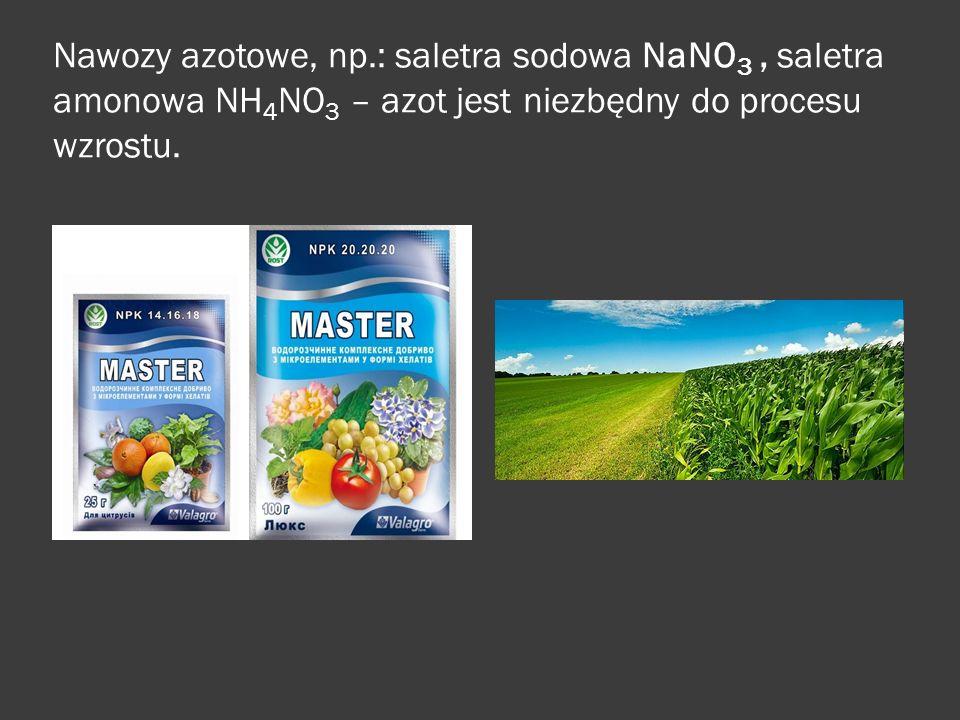 Nawozy azotowe, np.: saletra sodowa NaNO 3, saletra amonowa NH 4 NO 3 – azot jest niezbędny do procesu wzrostu.