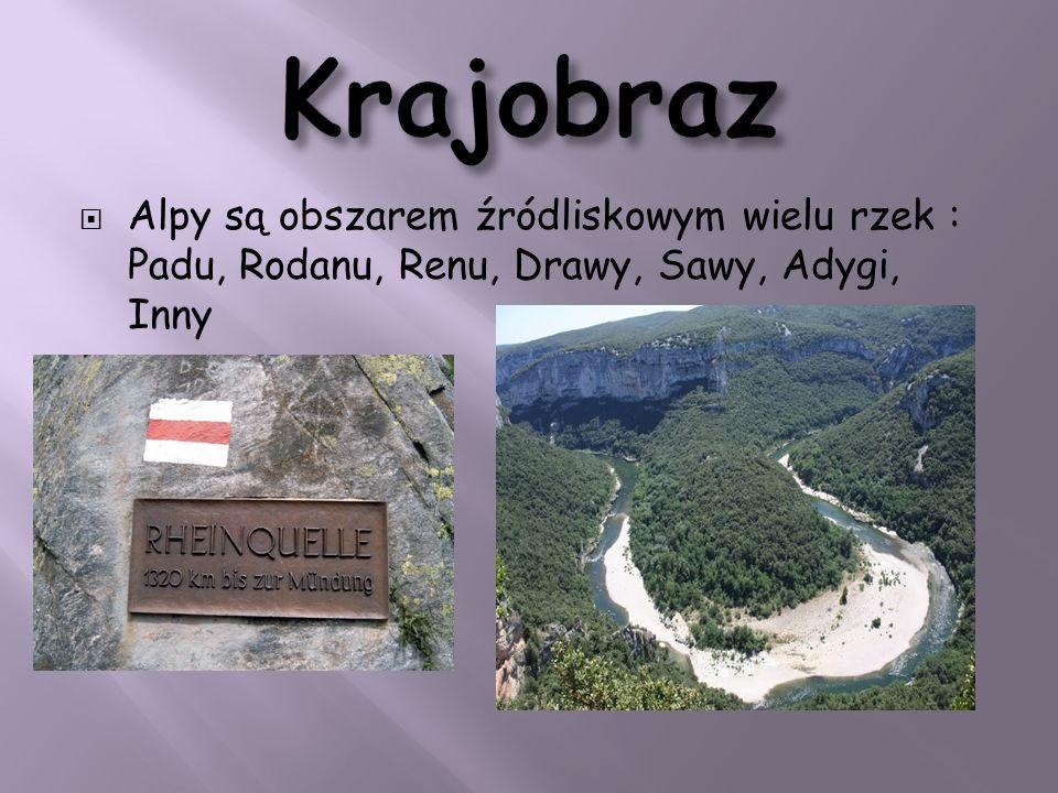 Alpy są obszarem źródliskowym wielu rzek : Padu, Rodanu, Renu, Drawy, Sawy, Adygi, Inny