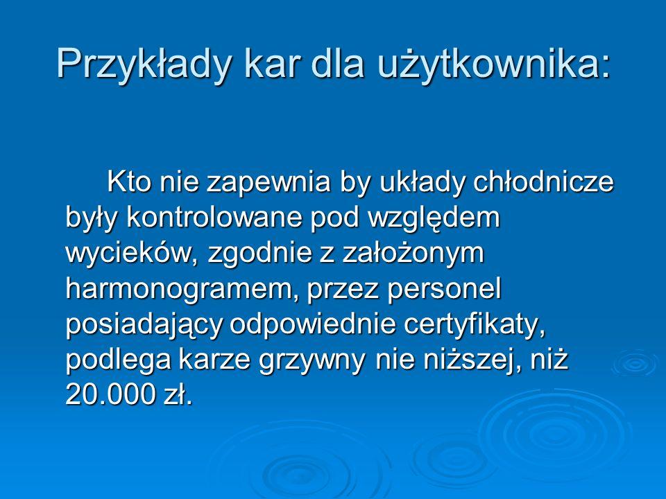 Przykłady kar dla użytkownika: Kto nie zapewnia by układy chłodnicze były kontrolowane pod względem wycieków, zgodnie z założonym harmonogramem, przez personel posiadający odpowiednie certyfikaty, podlega karze grzywny nie niższej, niż 20.000 zł.